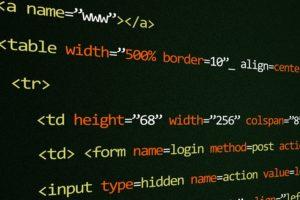Permalink to:sviluppo software